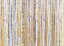 Bamboo Background. Bamboo Texture use for background Stock Photography
