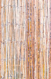 Bamboo Background. Bamboo Texture use for background Stock Photos