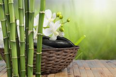 Bamboo. Spa treatment health spa orchid feng shui stone flower stock photography