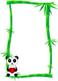 Bamboo banner. Banner or label of green bamboo canes and one black and white panda bear with heart, isolated Stock Image