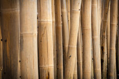 Bamboo barrier royalty free stock image