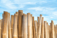 Bamboo barrier stock photography