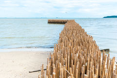Bamboo barrier stock image