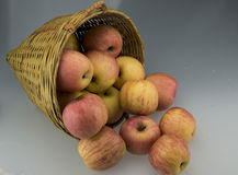 Bamboo basket with apple Stock Images