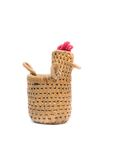 Bamboo basket a chicken on white background Royalty Free Stock Photos