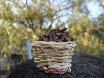 Bamboo basket full of cloves putting outside. Picture of bamboo basket full of cloves  putting outside Stock Images