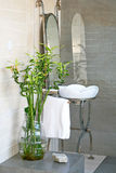 Bamboo bathroom Royalty Free Stock Photography