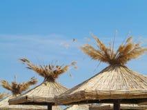 Bamboo beach umbrellas concept over blue sky Stock Photos