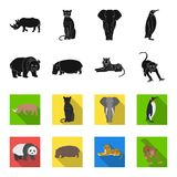 Bamboo bear, hippopotamus, wild animal tiger, monkey . Wild animal set collection icons in black,flet style vector. Symbol stock illustration Royalty Free Stock Images