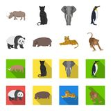 Bamboo bear, hippopotamus, wild animal tiger, monkey . Wild animal set collection icons in cartoon,flat style vector. Symbol stock illustration Royalty Free Stock Photography