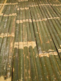 Bamboo bed Stock Photos
