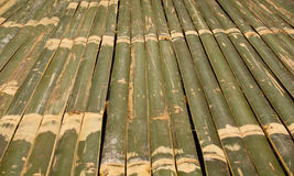 Bamboo Bed Stock Image