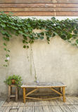Bamboo bench with green plant on concrete wall Royalty Free Stock Photos
