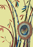 Bamboo and bird in a nest. Vector illustration Royalty Free Stock Image