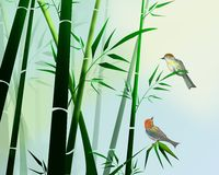 Bamboo and birds Stock Images