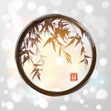 Bamboo in black enso zen circle. Stock Photo
