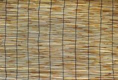 Bamboo blind Royalty Free Stock Photo