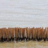 The bamboo block Stock Photos