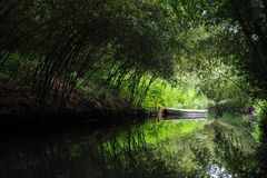 Bamboo boat Stock Image