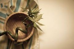 Bamboo bowl Royalty Free Stock Photo