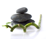 Bamboo branch with stones Stock Photo