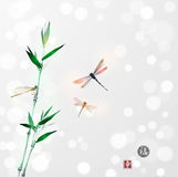 Bamboo branch and three dragonflies Stock Photos