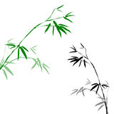 Bamboo branches Royalty Free Stock Photography