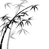 Bamboo branches. Abstract background with bamboo branches Royalty Free Stock Photography