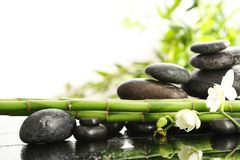 Bamboo branches with spa stones and orchid on table against blurred background. Space for text stock photo