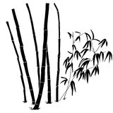 Bamboo branches  on the white background. Stock Images