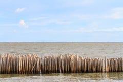 Bamboo breakwater Stock Image