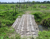 Bamboo bridge. On little canal Stock Photos