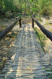 Bamboo bridge. In the forest Stock Photo