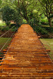 Bamboo Bridge. A bamboo bridge in a tropical botanical garden. Taken in Kauai, Hawaii Stock Photos