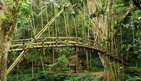 Bamboo Bridge. Bambo bridge in a small village of Baduy Tribe Royalty Free Stock Photography