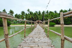 Bamboo bridge across mangrove swamp on Bantayan Island Stock Images