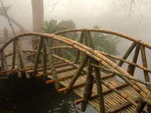 Bamboo Bridge Stock Image