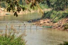 Bamboo bridge across the river Stock Image