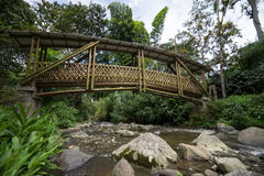 Bamboo bridge in Colombia Royalty Free Stock Photography