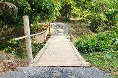 Bamboo bridge in countryside Royalty Free Stock Photo