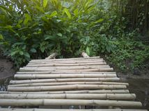 Bamboo bridge for crossing small canals. royalty free stock image
