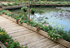 Bamboo bridge with flower Stock Image