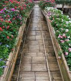 Bamboo bridge with the flower row. Royalty Free Stock Images