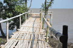 The bamboo bridge. For goto Royalty Free Stock Images