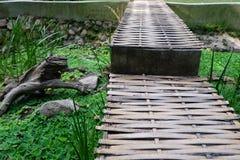 Bamboo bridge Stock Image