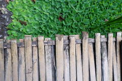 Bamboo bridge and green leaf Stock Images