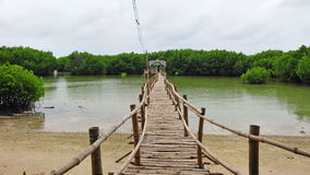 Bamboo bridge leading to mangrove swamp on Bantayan Island Royalty Free Stock Images
