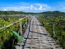 Bamboo bridge through lotus lake with mountain background, blue. Woven bamboo bridge through lotus lake with mountain background, blue sky and lotus leaf Royalty Free Stock Image