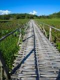 Bamboo bridge through lush lotus lake with mountain background a. Woven bamboo bridge through lush lotus lake with mountain background and blue sky in portrait Royalty Free Stock Image