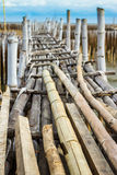 Bamboo bridge at Mangrove forest Royalty Free Stock Photos